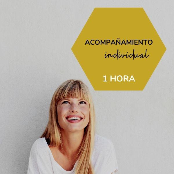 ACOMPAÑAMIENTO INDIVIDUAL 1 HORA